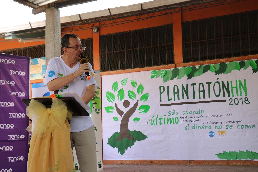Plantaton